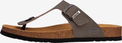 SCHOLL Sandals 'ELVIS 2.0' in Grey, Item view