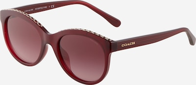 COACH Solglasögon '0HC8297U' i guld / burgunder, Produktvy