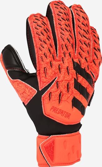 ADIDAS PERFORMANCE Gants de sport en corail / noir, Vue avec produit