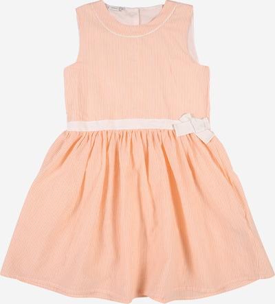 NAME IT Jurk 'HIRPER SPENCER' in de kleur Sinaasappel / Wit, Productweergave