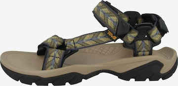 TEVA Sandals 'Terra FI 5 Universal' in Mixed colors