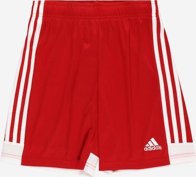 ADIDAS PERFORMANCE Pantalon de sport en rouge / blanc, Vue avec produit