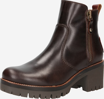 PANAMA JACK Ankle Boots 'Pauline' in Brown