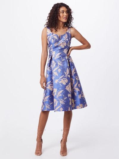 Adrianna Papell Kleid in royalblau / rosa, Modelansicht