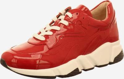 JOSEF SEIBEL Sneakers in Red, Item view