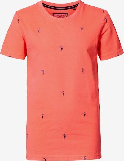 Petrol Industries T-Shirt in blau / koralle, Produktansicht
