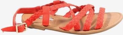 Primark Riemchen-Sandalen in 36 in rot, Produktansicht