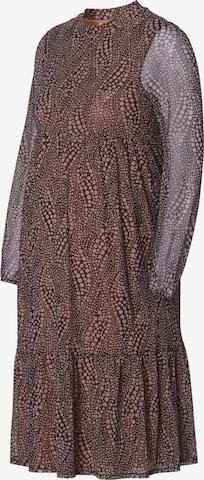 Esprit Maternity Kleid in Braun