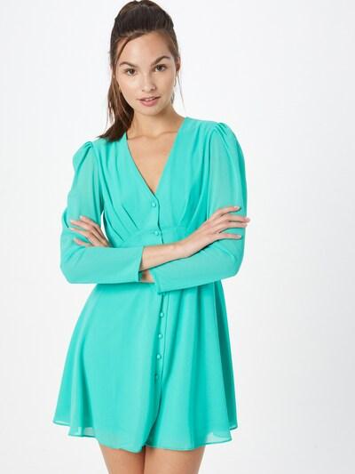 TFNC Kleid in jade, Modelansicht
