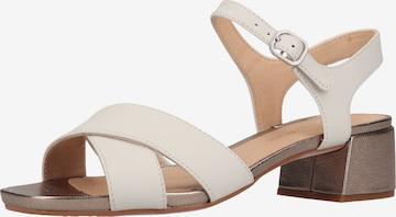 CLARKS Sandale in Weiß