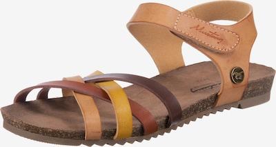 MUSTANG Sandale in hellbraun / dunkelbraun / gelb, Produktansicht