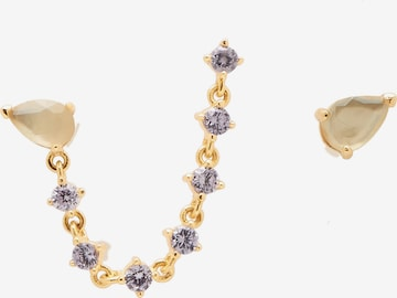 P D PAOLA Earrings 'Joanne' in Gold