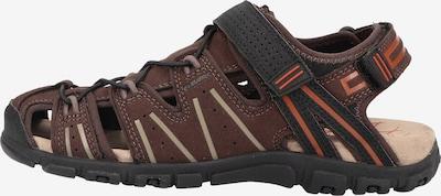 GEOX Sandalen in de kleur Bruin, Productweergave