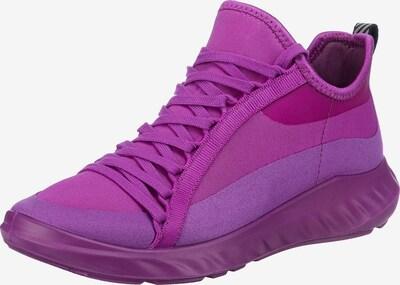 ECCO Sneaker in aubergine, Produktansicht