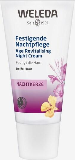 WELEDA Nachtcreme 'Nachtkerze Festigende' in weiß, Produktansicht