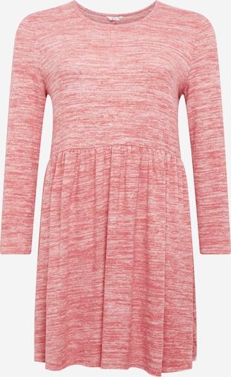 Z-One Robes en maille 'Clarice' en rose, Vue avec produit