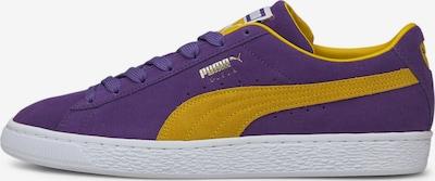 PUMA Baskets basses en moutarde / violet foncé, Vue avec produit