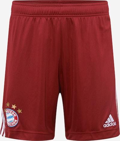 Pantaloni sport ADIDAS PERFORMANCE pe roșu vin / alb, Vizualizare produs