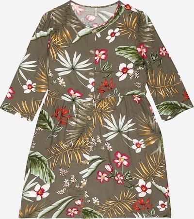 Suknelė 'NELLA' iš KIDS ONLY , spalva - rusvai žalia / mišrios spalvos, Prekių apžvalga