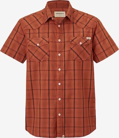 PADDOCKS Hemd in orange, Produktansicht
