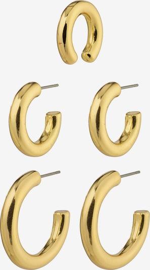 Pilgrim Ohrringe 'Reconnect' en gold, Vue avec produit
