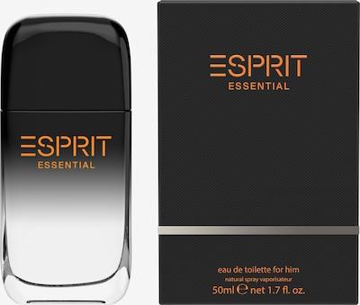 ESPRIT Eau de Toilette in schwarz, Produktansicht