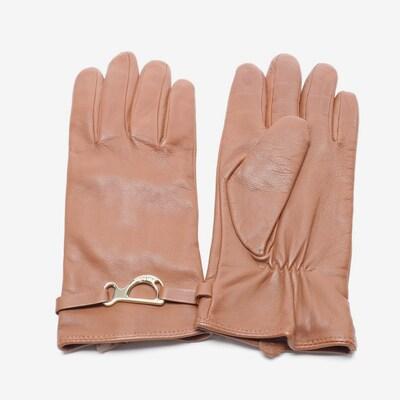 Lauren Ralph Lauren Handschuhe in M in schoko, Produktansicht