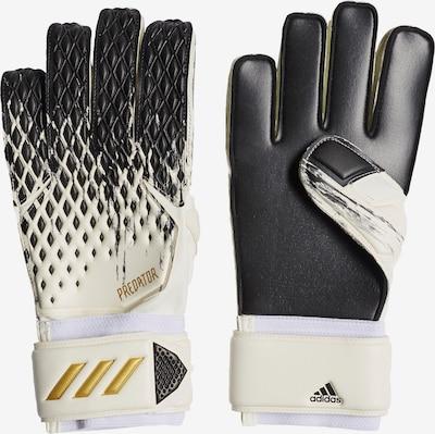 ADIDAS PERFORMANCE Sporthandschuhe 'Predator 20 Match' in gold / schwarz / weiß, Produktansicht