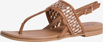 TAMARIS T-Bar Sandals in Brown