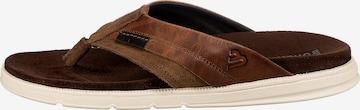 BULLBOXER T-Bar Sandals in Brown