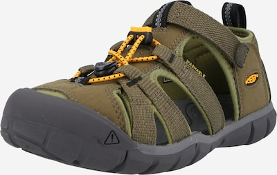 KEEN Sandale 'SEACAMP II CNX' in dunkelgrün, Produktansicht