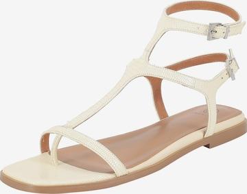 Ekonika T-Bar Sandals in Beige
