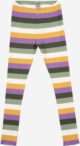 KANZ Leggings in Mischfarben