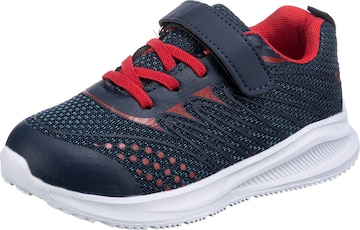 D.T. NEW YORK Sneakers in Blue