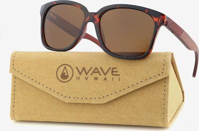 Wave Hawaii Sonnenbrille ' Whip ' in braun, Produktansicht
