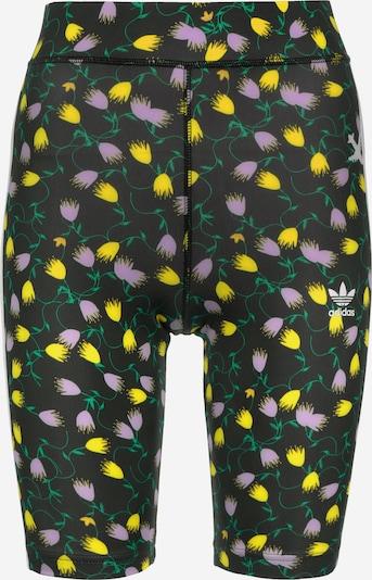 ADIDAS ORIGINALS Shorts 'AOP Cycling' in gelb / grün / pink / schwarz, Produktansicht