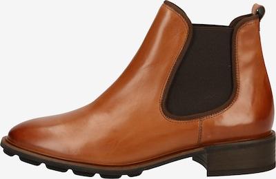 Paul Green Stiefelette in braun, Produktansicht