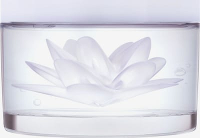 KENZO Maske 'Weißer Lotus' in weiß, Produktansicht
