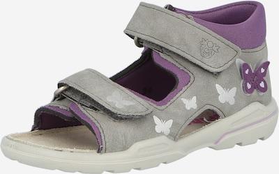 Pepino Otvorene cipele 'FRANKY' u grafit siva / roza, Pregled proizvoda
