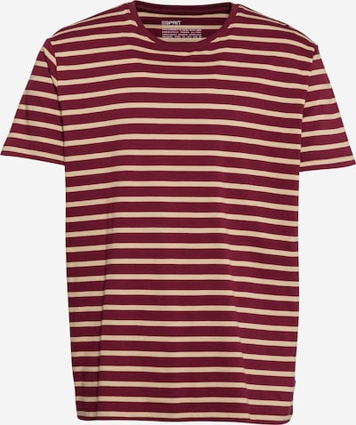 ESPRIT T-Shirt in puder / blutrot, Produktansicht