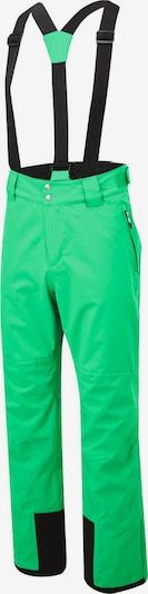 DARE 2B Skihose in grün, Produktansicht