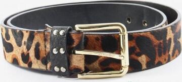 ZARA Belt in XS-XL in Black