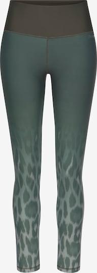 BENCH Sportske hlače u bež / tamo siva / zelena, Pregled proizvoda