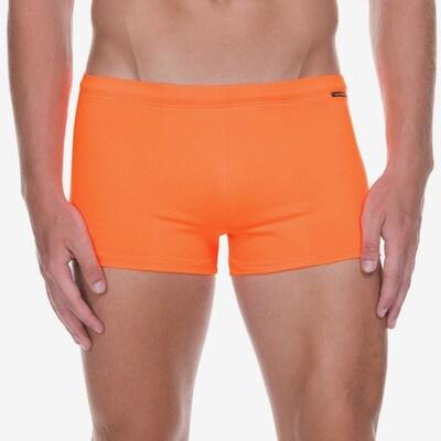 BRUNO BANANI Badeshorts in orange: Frontalansicht