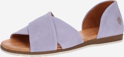 Apple of Eden Sandale 'Chiusi' in lila, Produktansicht