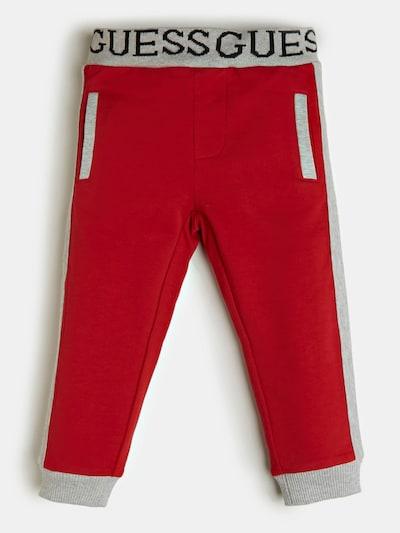 GUESS KIDS Hose in grau / rot, Produktansicht