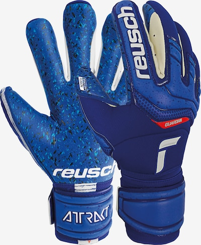 REUSCH Torwarthandschuhe 'Attrakt Fusion Ortho-Tec Guardian' in blau, Produktansicht
