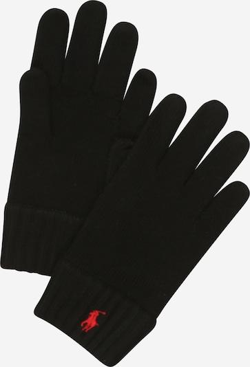 POLO RALPH LAUREN Handschuhe in schwarz, Produktansicht
