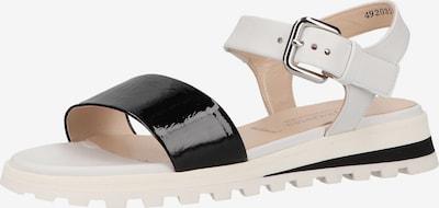 PETER KAISER Sandales à lanières en noir / blanc, Vue avec produit