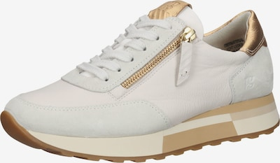 Paul Green Sneaker in gold / weiß, Produktansicht